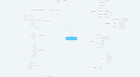 Mind Map: Padrões marceneiro