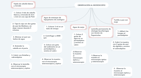 Mind Map: OBSERVACIÓN AL MICROSCOPIO