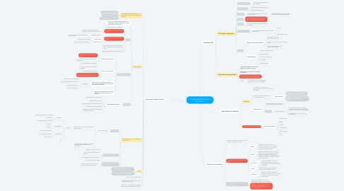 Mind Map: Fundamentos de ingeniería en software.