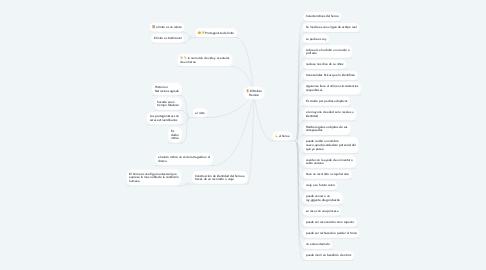Mind Map: El Relato Heroico