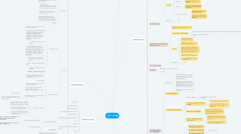Mind Map: Sprint ESS