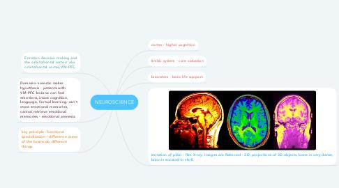 Mind Map: NEUROSCIENCE