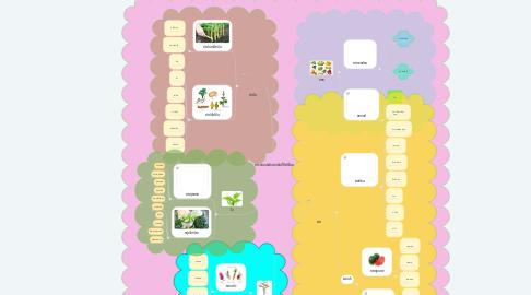 Mind Map: การจำแนกผักตามส่นที่ใช้บริโภค