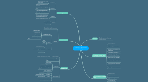 Mind Map: Procesos del Coaching