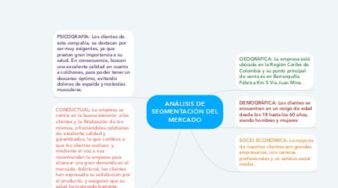 Mind Map: ANÁLISIS DE SEGMENTACIÓN DEL MERCADO