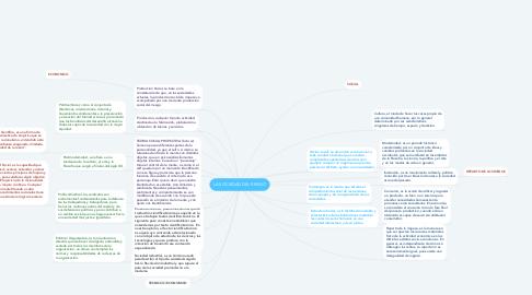 Mind Map: LA SOCIEDAD DEL RIESGO