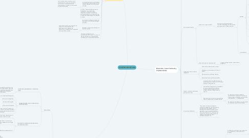 Mind Map: CONTROL DE LECTURA