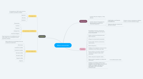 Mind Map: Matriz extracelular