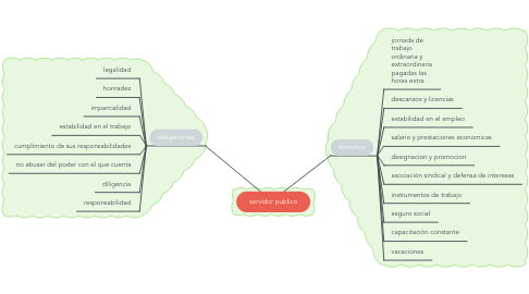 Mind Map: servidor publico