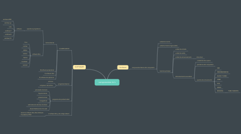 Mind Map: componentes tic´s