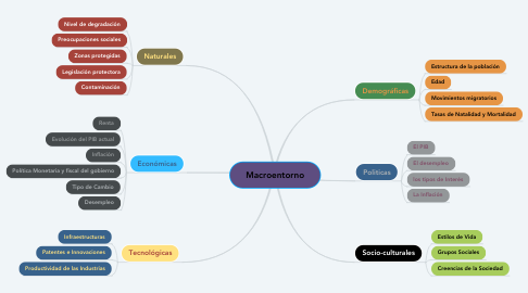 Mind Map: Macroentorno