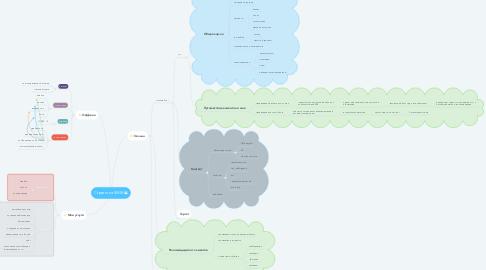 Mind Map: Стратегия SMM