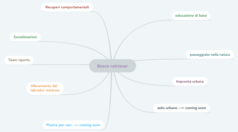 Mind Map: Bosco retriever
