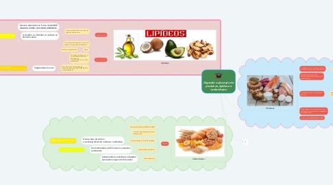 Mind Map: Digestão e absorção de proteínas, lipídeos e carboidratos