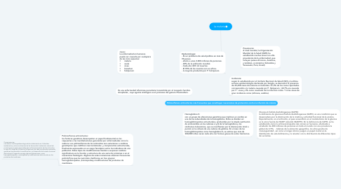 Mind Map: La malaria