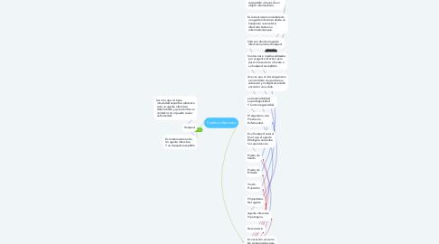 Mind Map: Cadena infecciosa