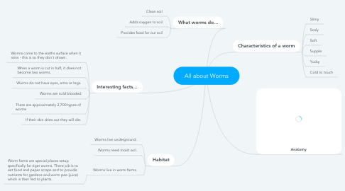 Mind Map: All about Worms