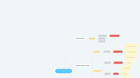 Mind Map: Gerente General CASH