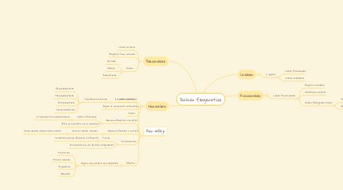 Mind Map: División filogenetica
