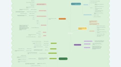 Mind Map: El almacén
