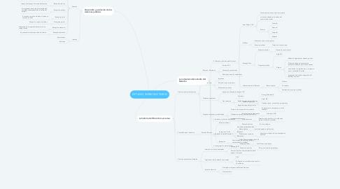 Mind Map: ESTUDIO INTRODUCTORIO