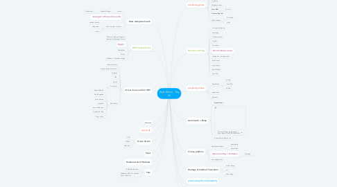 Mind Map: Summer - Re-mix the Place