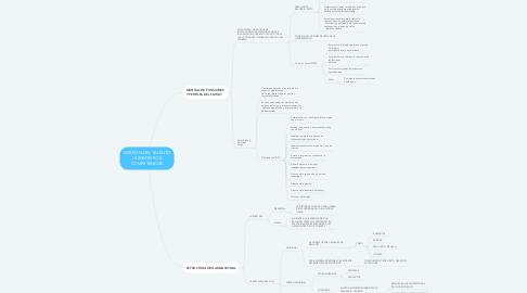 Mind Map: GESTIÓN DEL TALENTO HUMANO POR COMPETENCIAS
