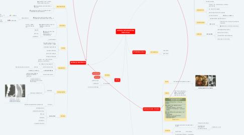 Mind Map: DOENÇA INFLAMATÓRIA INTESTINAL