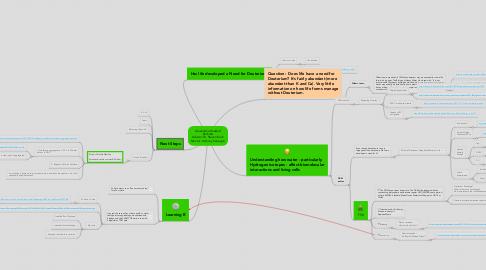 Mind Map: Alexandria Haddad Kochlab Advisor: Dr. Steven Koch Mentor: Anthony Salvagno
