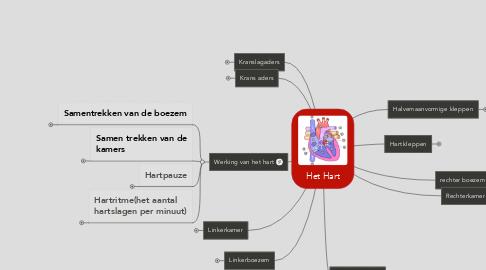 Mind Map: Het Hart