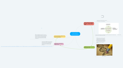 Mind Map: Plant Genetics Interactive Module