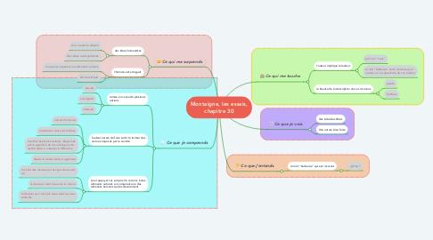 Mind Map: Montaigne, les essais, chapitre 30