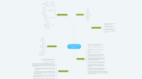 Mind Map: Empresas de Comercio Exterior