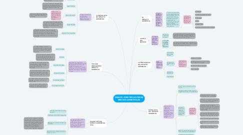 Mind Map: ENSAYO: IDENTIFICACIÓN DE RIESGOS AMBIENTALES