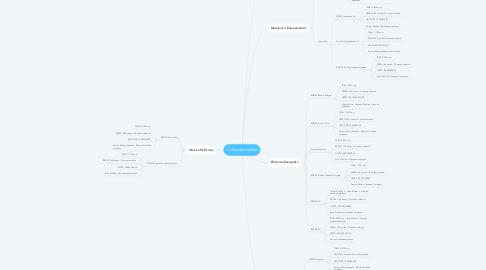 Mind Map: Linhas de Crédito