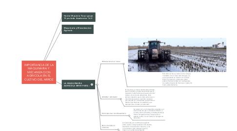 Mind Map: IMPORTANCIA DE LA MAQUINARIA Y  MECANIZACION AGRICOLA EN EL CULTIVO DEL ARROZ