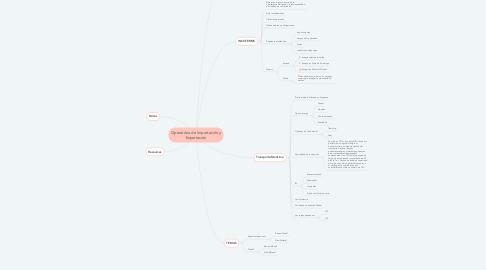 Mind Map: Operatória de Importación y Exportación