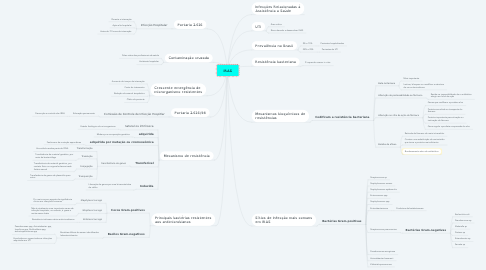 Mind Map: IRAS