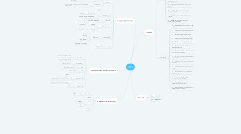 Mind Map: yuca