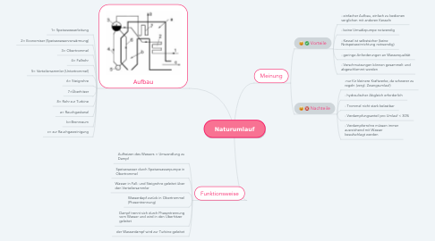 Mind Map: Naturumlauf