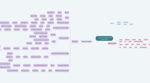 Mind Map: Marco estratégico de la organización