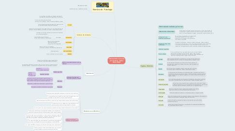 Mind Map: Enfermedades Causadas por S.aureus.  Nellys Mejia-UNAD