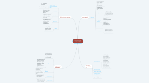 Mind Map: Percepción de consumidor