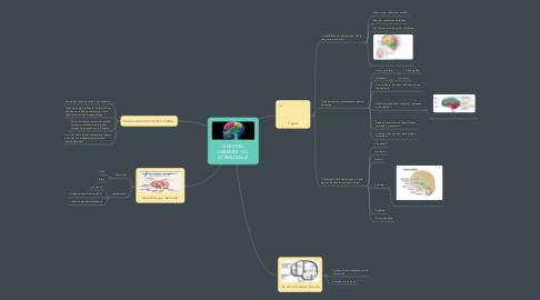 Mind Map: NUESTRO CEREBRO Y EL APRENDIZAJE