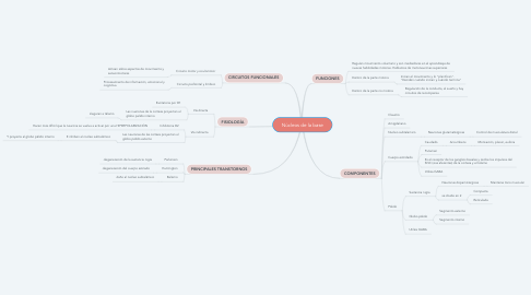 Mind Map: Núcleos de la base