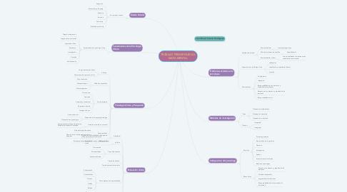 Mind Map: TRABAJO PRIMER PARCIAL MAPA MENTAL
