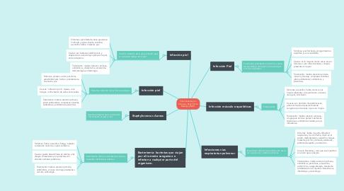 Mind Map: Enfermedades por S.Aureus_Kelly Yolima Bedoya_UNAD