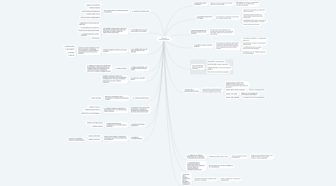 Mind Map: Teorías de internacionalización
