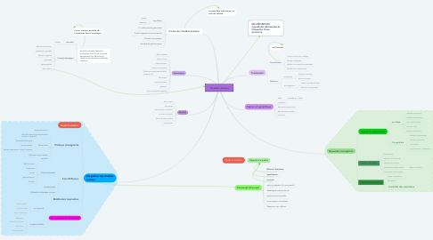Mind Map: Troubles anxieux