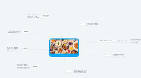 Mind Map: Gastronomía